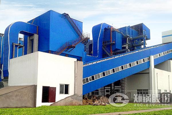 哪有生产木粉颗粒燃烧锅炉厂家