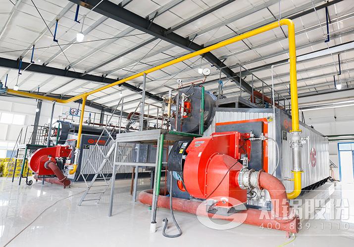 新乡某制药厂2台SZS型燃油燃气锅炉项