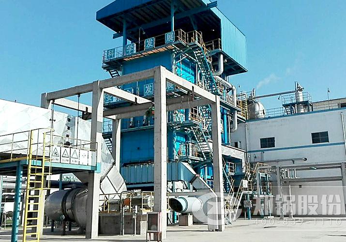 河南丰利65吨大型燃气锅炉项目