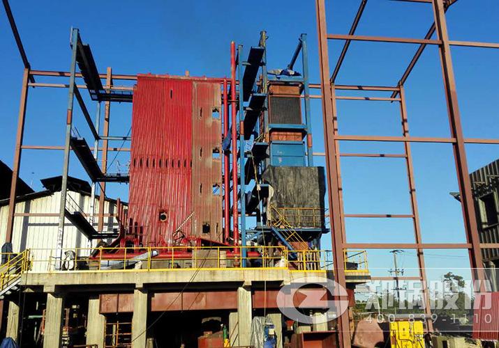 墨西哥30吨生物质蒸汽锅炉项目